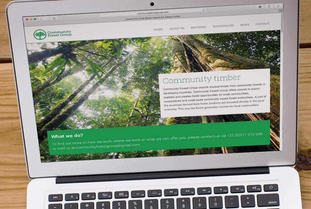 Logo en website ontwerp voor CFG